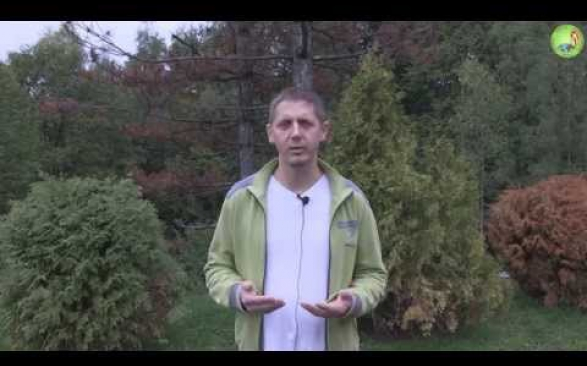 Embedded thumbnail for Odczułem pokój wewnętrzny